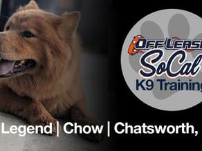 Legend | Chow | El Monte, CA