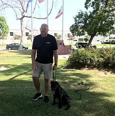 OffLeash SoCal Dog Training - Specialty Training