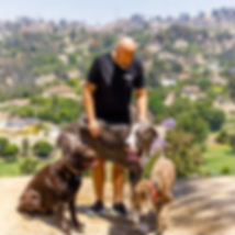 OffLeash SoCal Dog Trainer - Michael Dark