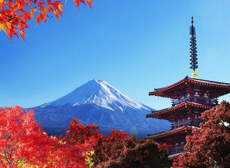 Momiji-gari: Chasing the Red Leaf