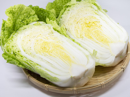 Hakusai, A Different Kind of Cabbage