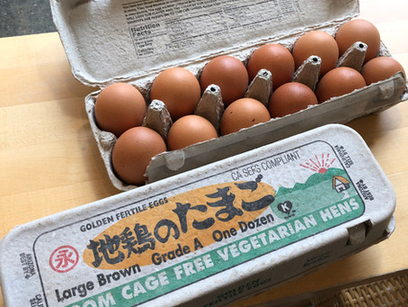 The Tasty Jidori Egg