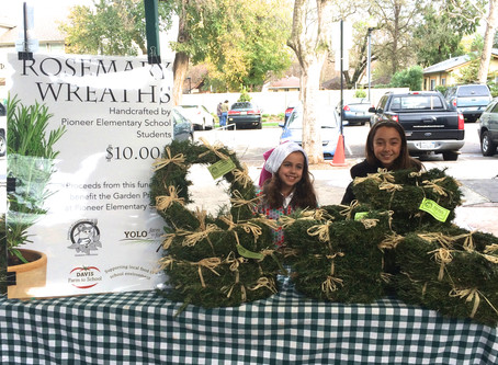 Find scarecrows and wreaths at Pioneer Elementary
