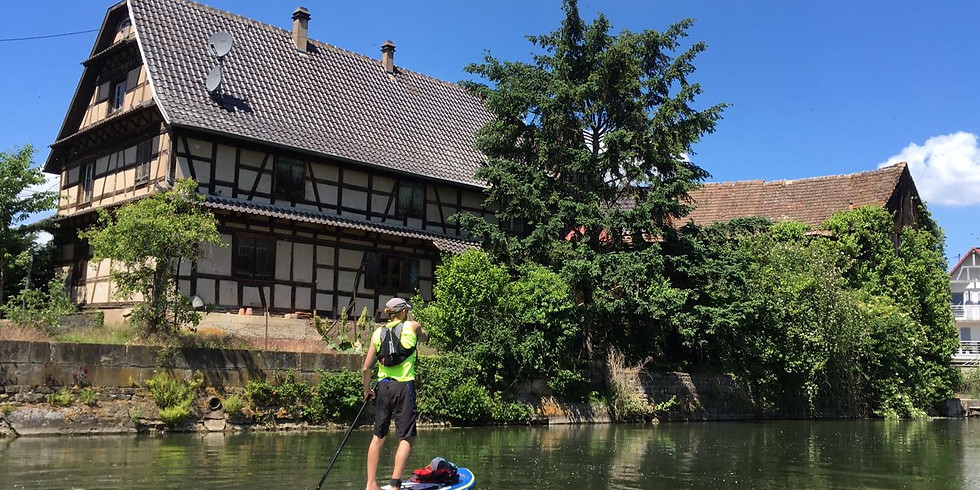L'Ill en Stand Up Paddle - Transfert groupe
