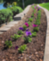 shrub bed weed control- services page .j