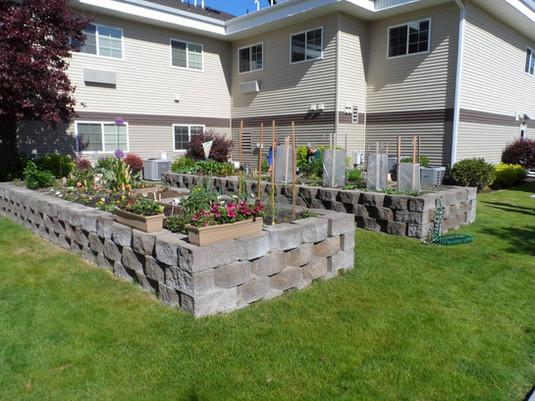 Evergreen Fountains Raised Gardens