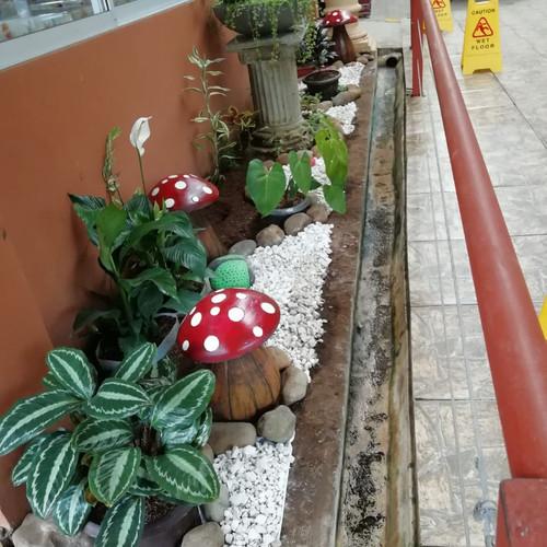 Jardín Edificio #2