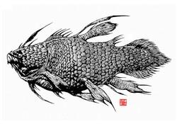 BigFish2g