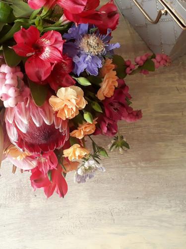 Protea, escabiosas y snowberry