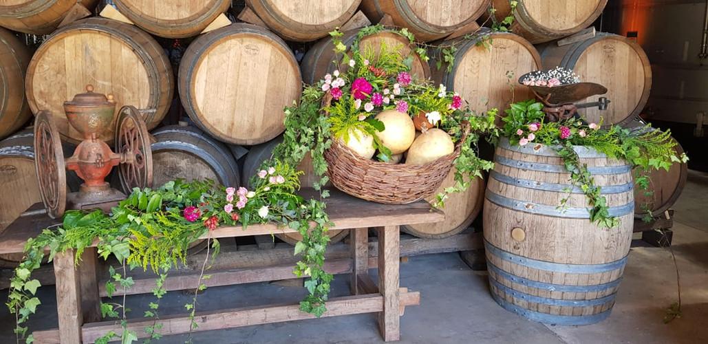 Ambientación en viña