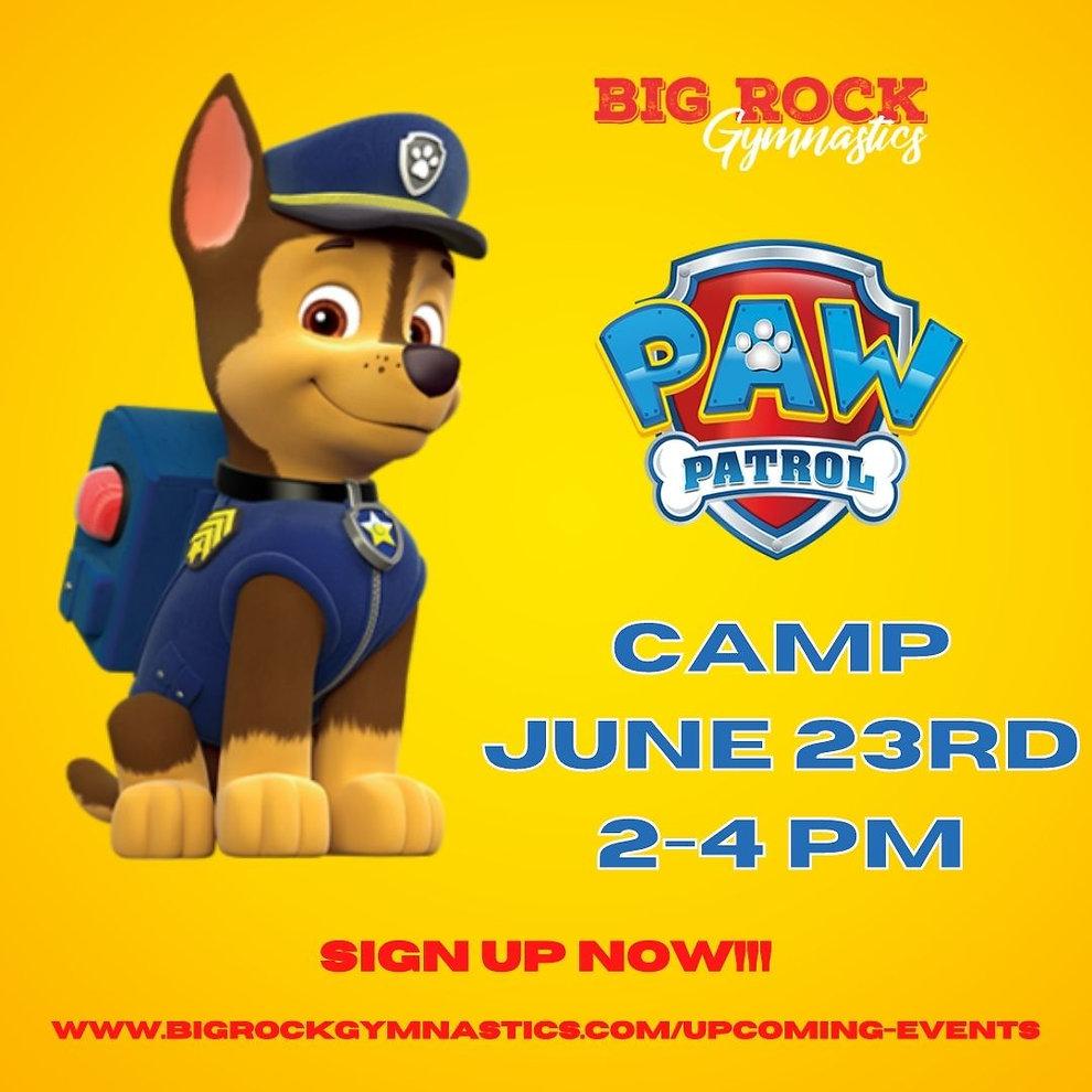 Copy of Paw Patrol Camp (5).jpg