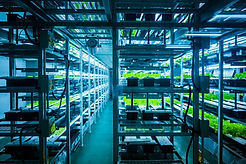 Sustainable food technology facilities