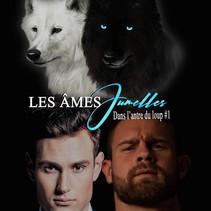 Les âmes jumelles - Tome 1: Dans l'antre du loup - Cathy Antier