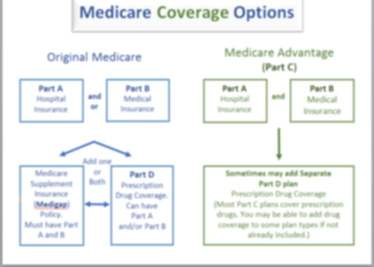 Medicare Options.png