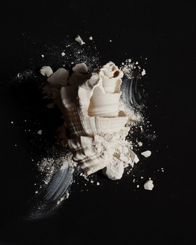 Shell_Anson-Call_Photography_2018.jpg