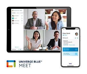 NEC Univerge Blue PC screens.jpg