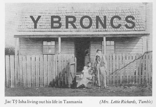Y Broncs - 07. Tyisha's Land (LiveStream)