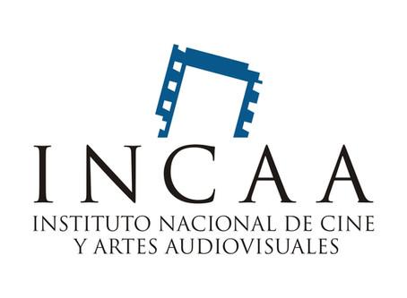 A un mes del reclamo por transparencia, Ralph Haiek pretende validar un balance fraudulento del INCA