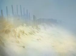 Dunes of Assateague