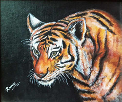 Bengal Tiger | Acrylic on Canvas