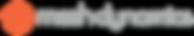 mesh dynamics source single line dark 13