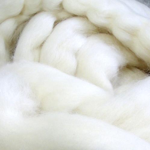 Falkland wool roving, white