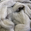 Thumbnail: Suffolk wool roving, natural