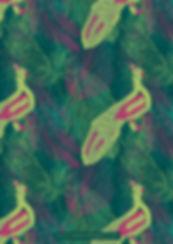 noshee-ahmed_tropical-elegance-peacock.j
