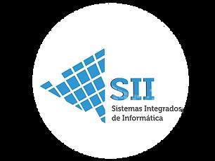 Sistemas_de_Informática.png