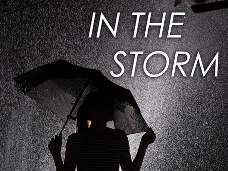 Novel Excerpt: The Woman In the Storm