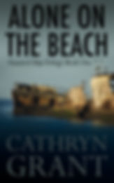Alone On the Beach Cathryn Grant Suburba