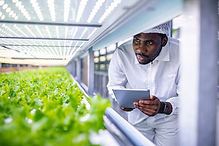 iStock = Vertical Farming.jpg