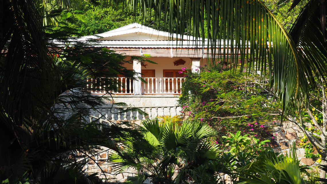 Bijou Villa Praslin hidden behind the palm trees and tropical garden.