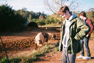 Cane Creek Farm