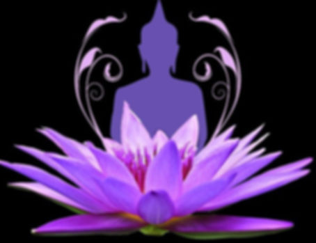 water-lily-2125043_1280_edited.jpg
