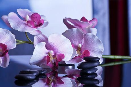 massage-599505_1280.jpg