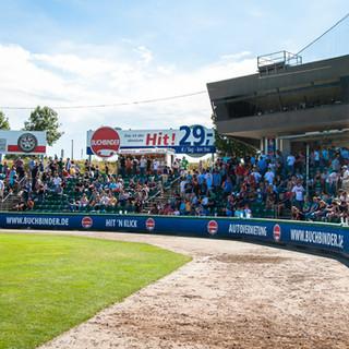 Armin Wolf Baseball Arena