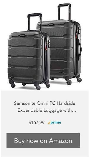 Samsonite 1.jpg