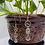 Thumbnail: Namaste Yogi Hook Earrings