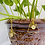 Thumbnail: Clear Quartz Lotus Pyramid Earrings