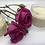 Thumbnail: Aggie's Creation: Rose Butter