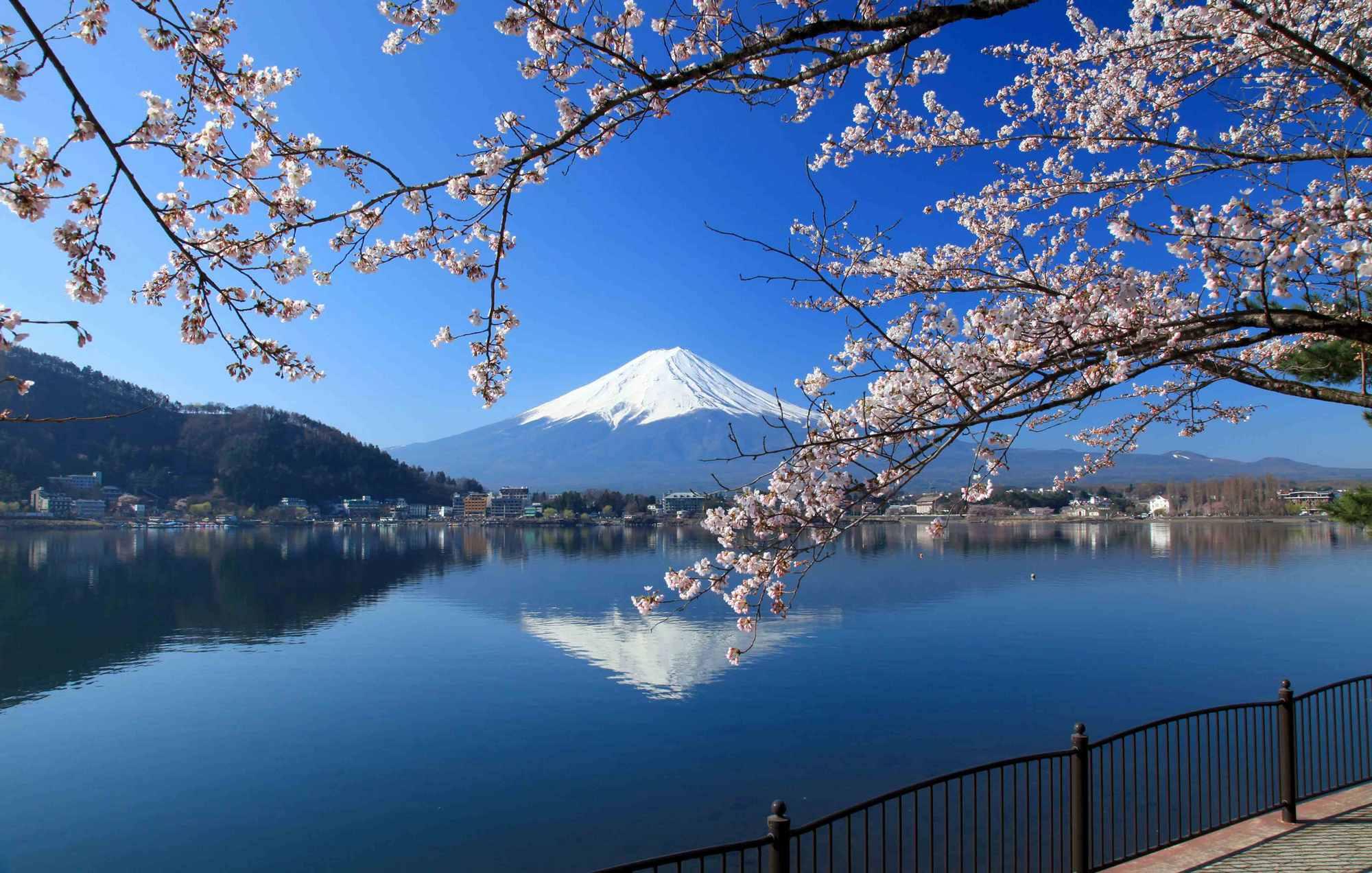 8507-vysokiy-turisticheskiy-sezon-v-yaponii-5816