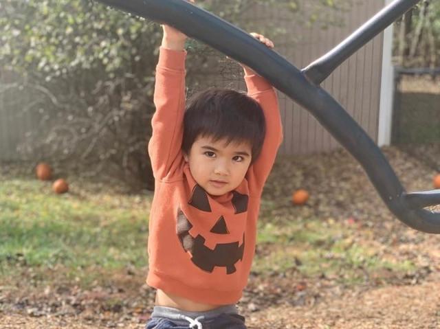 Toddler hanging from jungle gym MAC.jpeg