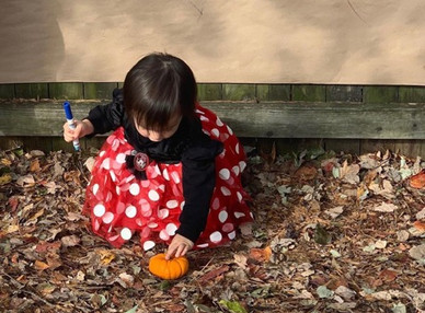 Infant Pumpkin Adventure ST.jpg