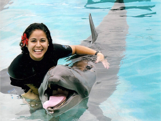 My passion for marine rehabilitation grew while working with these majestic creatures.