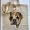 Thumbnail: Digital Pet Portrait - Bundle 3