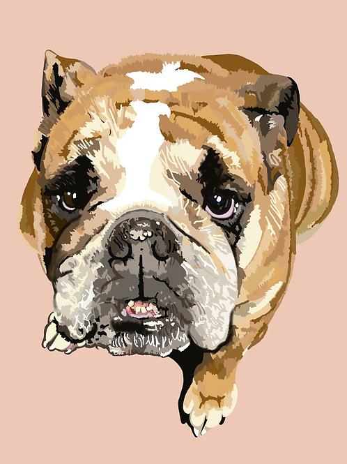 Digital Pet Portrait - Bundle 2