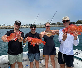 Reel Life Rockfish