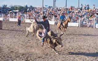 west florida homestead_rodeo_si-j9ohwdhcv27yuixmsdtp_rgb_s copy 2.jpeg