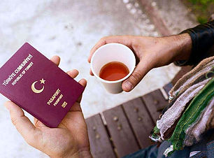 Benefits-of-obtaining-Turkish-citizenshi
